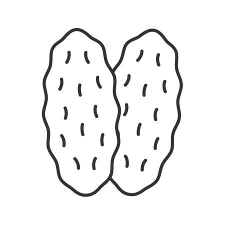 Thymus gland linear icon. Primary hematopoietic organ. Thin line illustration. Contour symbol.