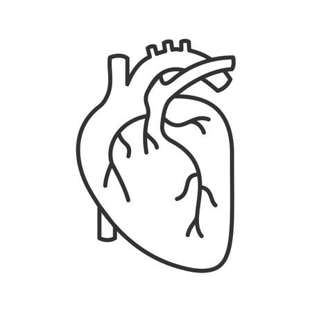 Human heart anatomy linear icon. Thin line illustration. Contour symbol. Illusztráció