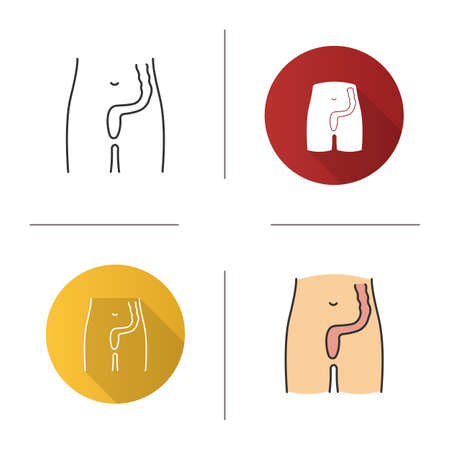 Rectum and anus icon. Last segment of large bowel. Gastrointestinal tract. Flat design, linear and color styles. Isolated vector illustrations