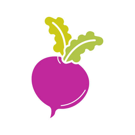 Beet glyph color icon. Radish. Silhouette symbol on white background with no outline. Negative space. Vector illustration