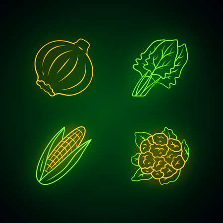 Vegetables neon light icons set. Cauliflower, onion, corn, spinach. Vitamin. Diet. Healthy nutrition. Organic food. Vegetarian food. Glowing signs. Vector isolated illustrations