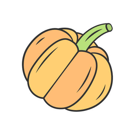 Pumpkin color icon. Gourd. Halloween pumpkin. Organic food. Agriculture plant. Vegetable farm. Healthy nutrition. Diet. Vitamin. Recipe ingredient. Vegan food. Isolated vector illustration