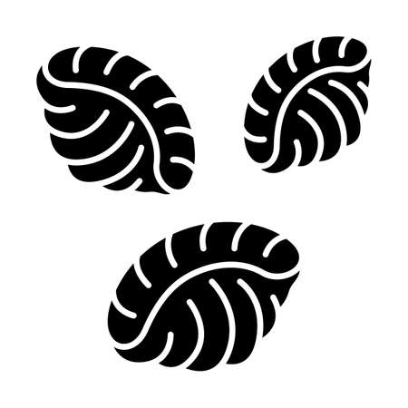Shells pasta glyph icon. Dough seashells. Italian conchiglie. Mediterranean cuisine. Dry semi-finished product. Type of noodles. Silhouette symbol. Negative space. Vector isolated illustration