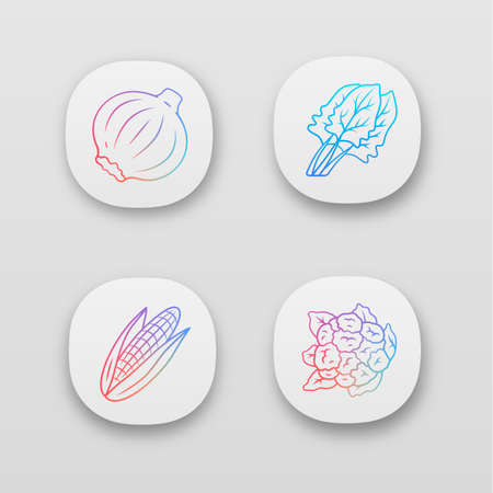 Vegetables app icons set. Cauliflower, onion, corn, spinach. Vitamin and diet. Healthy nutrition. UIUX user interface. Web or mobile applications. Vector isolated illustrations