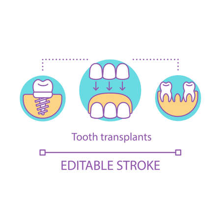 Tooth transplants concept icon. Technology of restorative dentistry. Dental clinic service. Implantation of lost teeth idea thin line illustration. Vector isolated outline drawing. Editable stroke