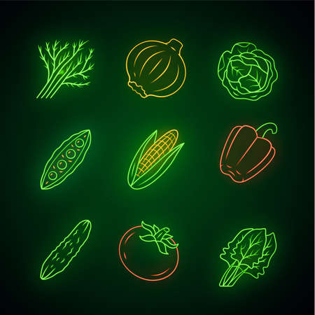 Vegetables neon light icons set. Cabbage, beet, corn, tomato, cucumber, pepper. Vitamin. Diet. Healthy nutrition. Vegetarian food. Glowing signs. Vector isolated illustrations Ilustração Vetorial