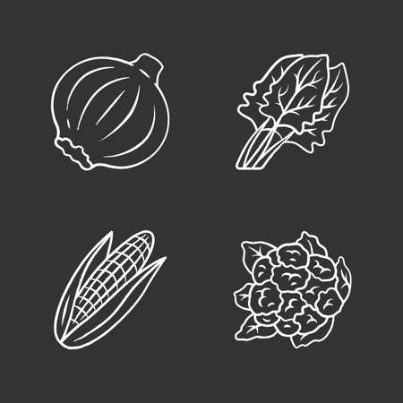 Vegetables chalk icons set. Cauliflower, onion, corn, spinach, maize. Vitamin and diet. Healthy nutrition. Vegan and vegetarian food. Isolated vector chalkboard illustrations