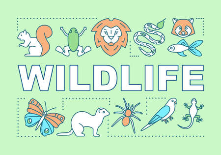 Wildlife word concepts banner. Travel experience. Wild animals observation. Jungle trip. National parks. Presentation, website. Isolated lettering typography idea, icon. Vector outline illustration