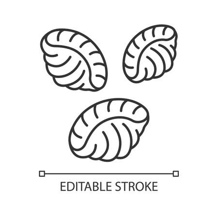 Shells pastalinear icon. Dough seashells. Italian conchiglie. Mediterranean cuisine. Type of noodles. Thin line illustration. Contour symbol. Vector isolated outline drawing. Editable stroke