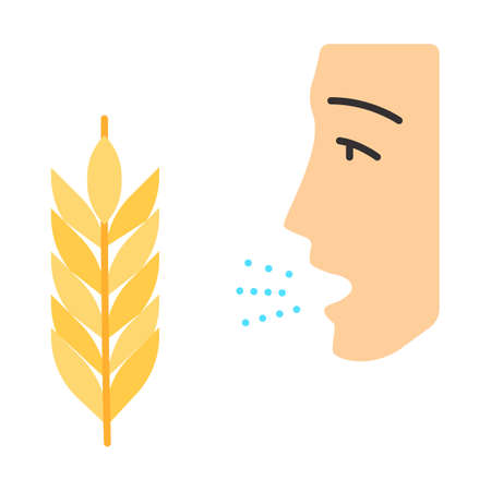 Wheat allergy flat design long shadow color icon. Allergic asthma. Gluten intolerance. Hypersensitivity of immune system. Inhalation of allergens. Seasonal allergy. Vector silhouette illustration
