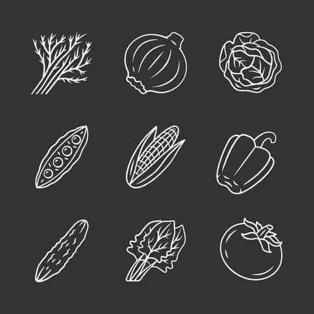Vegetables chalk icons set. Potato, cabbage, carrot, pepper. Soup and salad ingredients. Vitamin and diet. Vegan and vegetarian food. Healthy nutrition. Isolated vector chalkboard illustrations Illusztráció