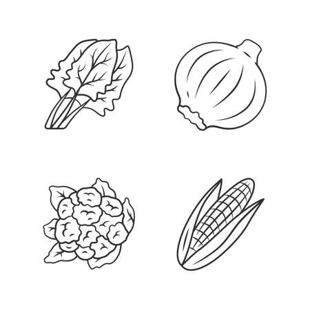 Vegetables linear icons set. Cauliflower, onion, corn, spinach. Vitamin and diet. Healthy nutrition. Thin line contour symbols. Isolated vector outline illustrations. Editable stroke