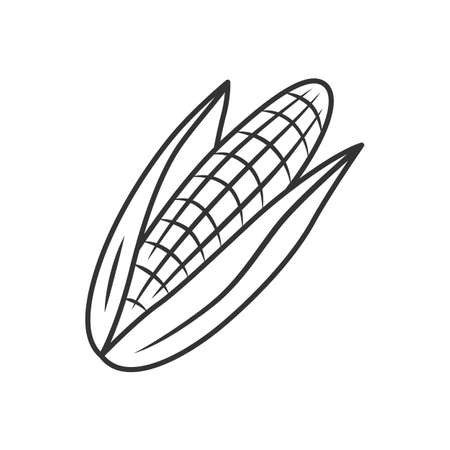 Corn linear icon. Maize. Agriculture plant. Popcorn ingredient. Vegetable farm. Healthy nutrition. Vegan food. Thin line illustration. Contour symbol. Vector isolated outline drawing. Editable stroke Stock Illustratie