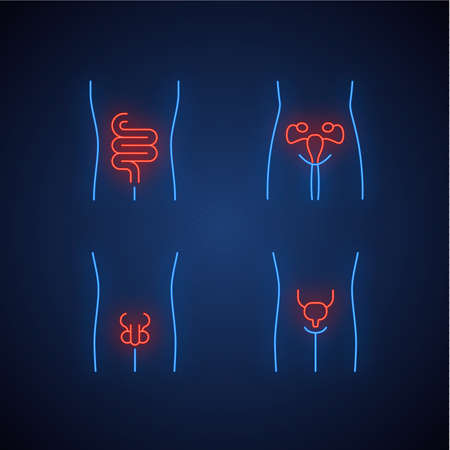Ensemble d'icônes de néon d'organes humains sains. Intestins et vessie en bonne santé. Fonctionnement des systèmes reproducteurs des hommes et des femmes. La fertilité. Signes lumineux. Illustrations vectorielles isolées Vecteurs