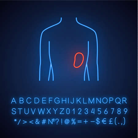 Healthy spleen neon light icon. Human organ in good health. Functioning lymphatic system.  Wholesome immune system. Glowing sign with alphabet, numbers and symbols. Vector isolated illustration