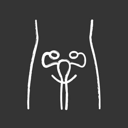 Healthy women reproductive system chalk icon. Human organ in good health. Fertility. Internal body part in good shape. Wholesome women health. Isolated vector chalkboard illustration  イラスト・ベクター素材