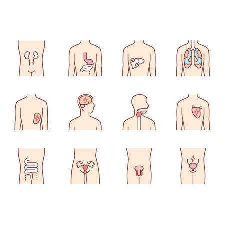 Ill human organs color icons set. Sore heart and lungs. Aching throat and urinary bladder. Unhealthy liver and intestines. Sick internal body parts. Isolated vector illustrations