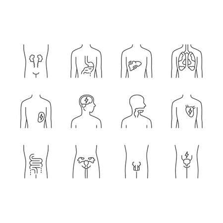 Ill human organs linear icons set. Sore heart and lungs. Aching throat and urinary bladder. Unhealthy liver. Thin line contour symbols. Isolated vector outline illustrations. Editable stroke Illustration