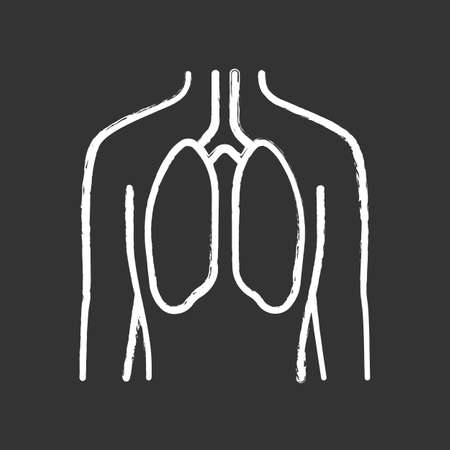 Healthy lungs chalk icon. Human internal organ in good health. People wellness. Functioning pulmonary system. Wholesome respiratory health. Isolated vector chalkboard illustration