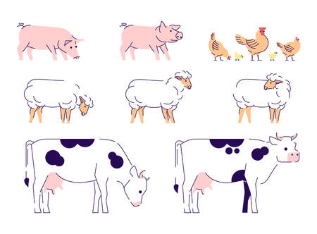 Domestic animals flat vector illustrations set. Livestock, husbandry farming isolated design elements with outline. Cows, sheeps, pigs and chickens. Dairy, poultry farm. Barnyard animals collection Illustration