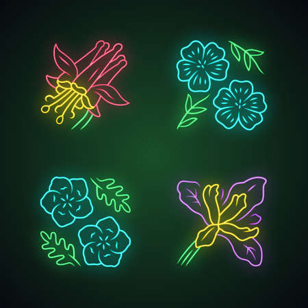 Wild flowers neon light icons set. Crimson columbine, blue flax, linum, douglas iris. Blooming wildflowers, weed. Field, meadow herbaceous plant. Glowing signs. Vector isolated illustrations
