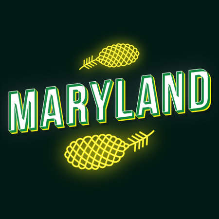 Maryland vintage 3d vector lettering. Retro bold font, typeface. Pop art stylized text. Old school style neon light letters. 90s, 80s poster, banner, t shirt typography design. Green color background Illusztráció