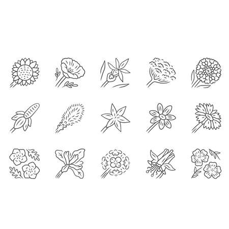 Wild flowers linear icons set. Spring blossom. California wildflowers. Garden decorative blooming plants. Botanical bundle. Thin line contour symbols. Isolated vector outline illustrations