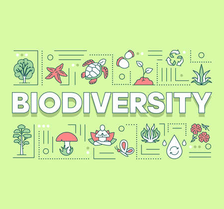 Bannière de concepts de mot biodiversité. Réserve forestière. Maintien de l'écosystème. La vie sous-marine. Présentation, site internet. Idée de typographie de lettrage isolé avec des icônes linéaires. Illustration de contour de vecteur Vecteurs