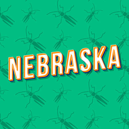 Nebraska vintage 3d vector lettering. Retro bold font, typeface. Pop art stylized text. Old school style letters. 90s, 80s poster, banner, t shirt typography design. Emerald color background