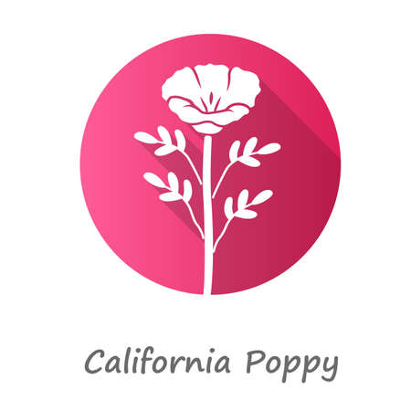California poppy pink flat design long shadow glyph icon. Papaver rhoeas with name inscription. Corn rose blooming wildflower. Herbaceous plants. Field common poppy. Vector silhouette illustration Illustration
