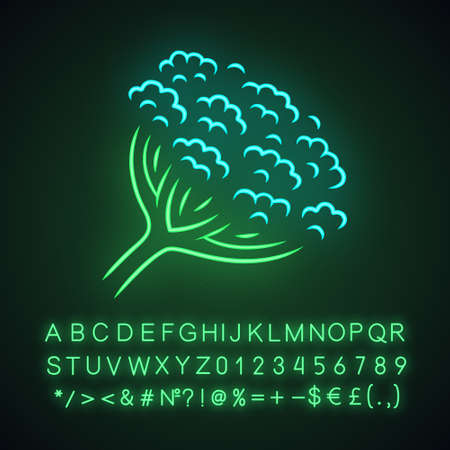 Cow parsnip neon light icon. Hogweed flower. Herbaceous plant. Heracleum maximum. Indian celery. Wildflower, weed. Spring blossom. Glowing sign with alphabet, numbers. Vector isolated illustration