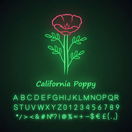 California poppy neon light icon. Papaver rhoeas with name inscription. Corn rose blooming wildflower. Herbaceous plants. Field common poppy. Glowing alphabet, numbers. Vector isolated illustration