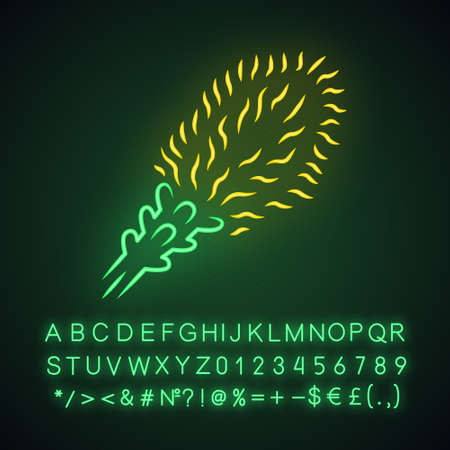 Liatris neon light icon. Blazing star blooming flower. Dwarf gayfeather garden plant. Spicata kobold. Wildflower. Spring blossom. Glowing sign with alphabet, numbers. Vector isolated illustration