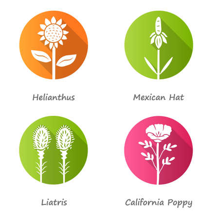 Wild flowers flat design long shadow glyph icons set. Helianthus, mexican hat, liatris, California poppy. Blooming wildflowers, weed. Spring blossom with inscription. Vector silhouette illustration Ilustração