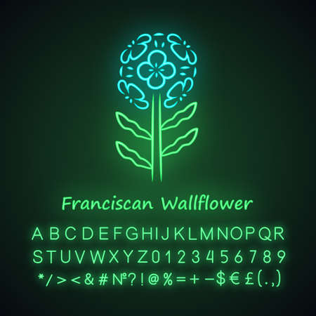 Franciscan wallflower neon light icon. Garden flowering plant with name. Erysimum franciscanum. Blooming wildflower, weed. Spring blossom. Glowing alphabet, numbers. Vector isolated illustration Ilustrace