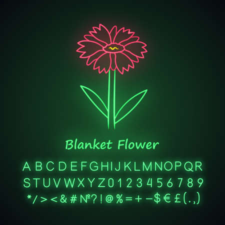 Blanket flower neon light icon. Gaillardia aristata garden plant with name inscription. Arizona apricot inflorescence. Summer, spring blossom. Glowing alphabet, numbers. Vector isolated illustration