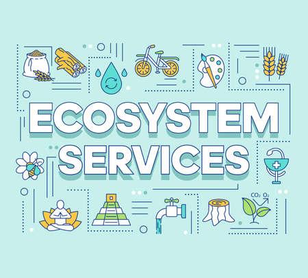 Ecosystem services word concepts banner. Provisioning, regulating. Cultural and health service. Presentation, website. Isolated lettering typography idea with linear icons. Vector outline illustration