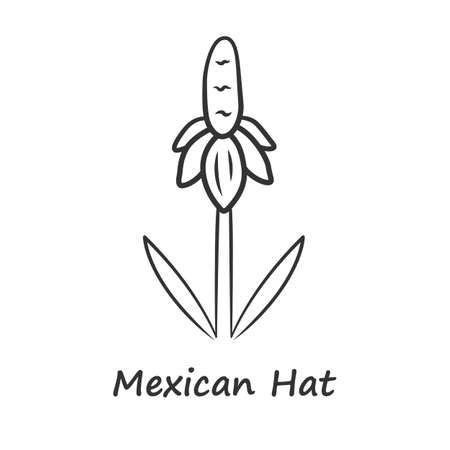 Mexican hat wild flower linear icon. Upright prairie coneflower with name. Ratibida columnifera plant inflorescence. Blooming wildflower. Thin line illustration. Vector isolated outline drawing