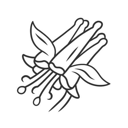 Crimson columbine linear icon. Aquilegia formosa. Blooming wildflower. Spring blossom. Red columbine.  Wild herbaceous plant. Thin line illustration. Contour symbol. Vector isolated outline drawing
