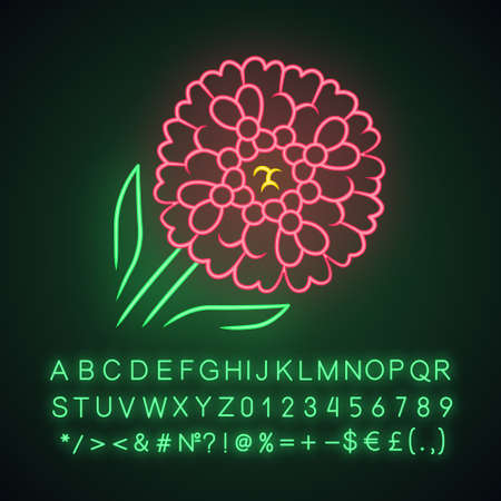 Candytuft neon light icon. Aster garden flower. Iberis evergreen perennial plant. Blooming wildflower. Spring blossom. Glowing sign with alphabet, numbers and symbols. Vector isolated illustration Illusztráció