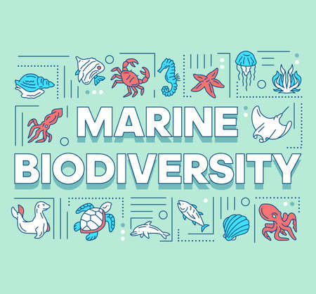 Marine biodiversity word concepts banner. Ocean animals diversity. Underwater wildlife. Presentation, website. Isolated lettering typography idea with linear icons. Vector outline illustration