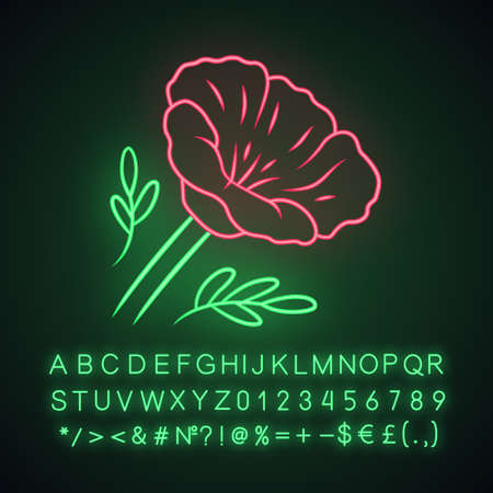 California poppy neon light icon. Papaver rhoeas. Corn rose blooming wildflower. Herbaceous plants. Field common poppy. Summer blossom. Glowing alphabet, numbers. Vector isolated illustration