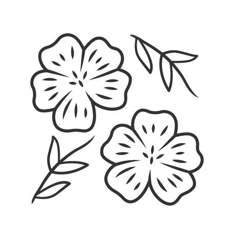 Blue flax plant linear icon. Linen wild flower. Spring blossom. Blooming linum wildflower. Thin line illustration. Contour symbol. Vector isolated outline drawing