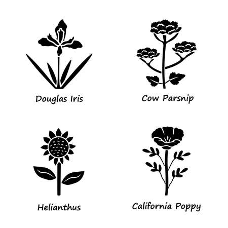 Wild flowers glyph icons set. Douglas iris, cow parsnip, helianthus, california poppy. Blooming wildflowers, weed. Field, meadow herbaceous plants. Silhouette symbols. Vector isolated illustration Ilustrace
