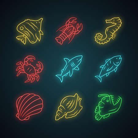 Marine animals neon light icons set. Swimming shark, anglerfish, butterflyfish. Underwater creature. Aquatic organism. Seafood restaurant. Lobster, tuna. Glowing signs. Vector isolated illustrations
