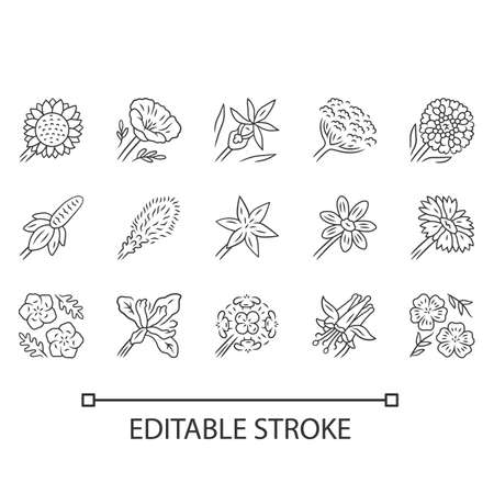 Wild flowers linear icons set. Thin line contour symbols. Spring blossom. California wildflowers. Garden decorative blooming plants. Botanical bundle. Isolated vector illustrations. Editable stroke