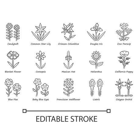 Wild flowers linear icons set. Spring blossom. California wildflowers with names. Garden blooming plants. Botanical bundle. Thin line contour symbols. Isolated vector illustrations. Editable stroke