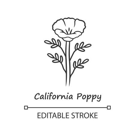 California poppy linear icon. Papaver rhoeas with name. Corn rose blooming wildflower. Herbaceous plants. Field poppy. Thin line illustration. Vector isolated outline drawing. Editable stroke