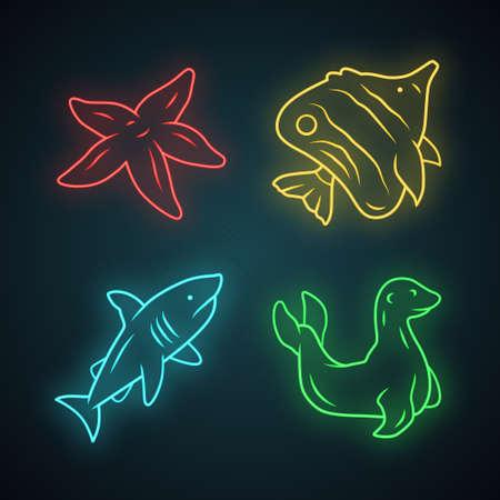 Sea animals neon light icons set. Starfish, butterflyfish, shark, seal. Ocean underwater wildlife. Aquatic fish species. Undersea world. Oceanography. Glowing signs. Vector isolated illustrations 일러스트