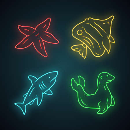 Sea animals neon light icons set. Starfish, butterflyfish, shark, seal. Ocean underwater wildlife. Aquatic fish species. Undersea world. Oceanography. Glowing signs. Vector isolated illustrations Illustration